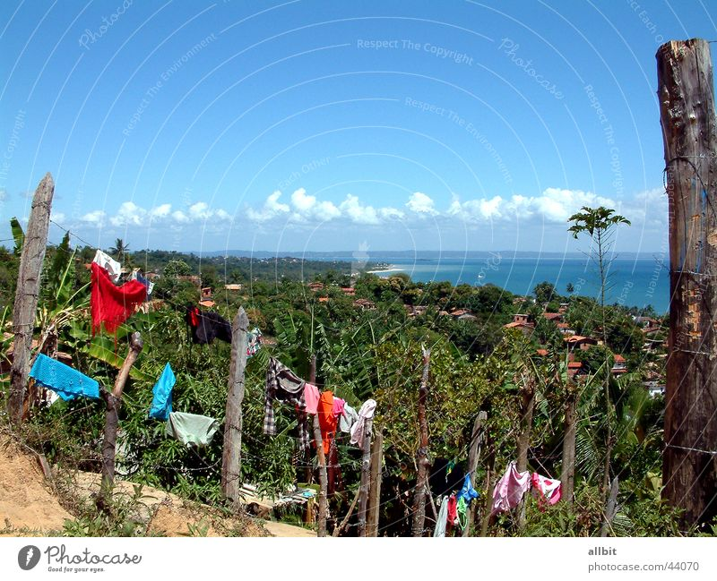 Water Sun Ocean Summer Beach Vacation & Travel Clouds Island Americas Palm tree Fence Laundry Brazil South America