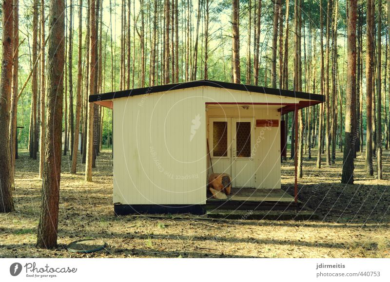 hut Vacation & Travel Summer House (Residential Structure) Nature Tree Forest Hut Wall (barrier) Wall (building) Facade Terrace Window Door Roof Relaxation