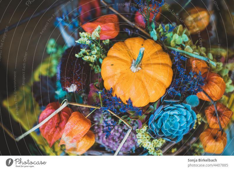 Slowly it becomes autumnal.... Colorful decoration with ornamental pumpkin Autumn Autumnal Decoration Hallowe'en Pumpkin at home Season variegated Orange
