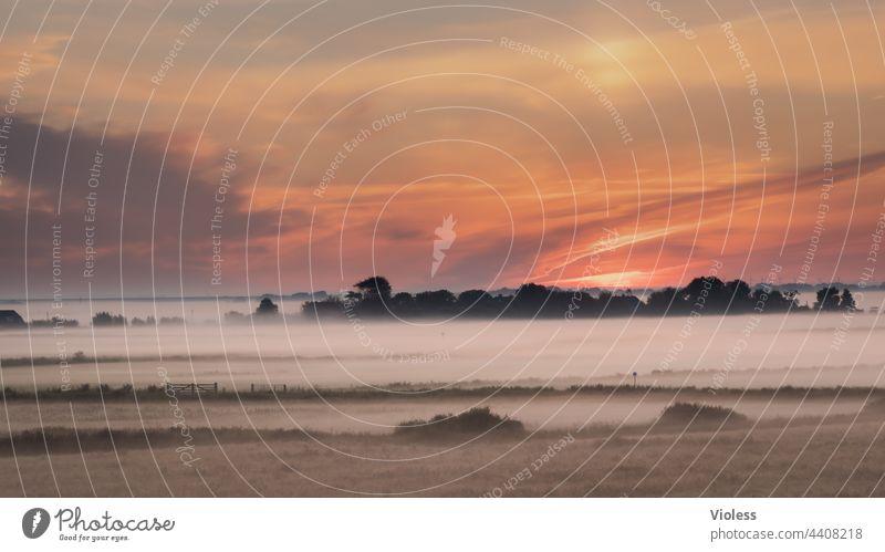 morning has broken - early morning fog moves over the fields Sunrise Fog moisture agrarian Gate dawn Dew wide Orange sight