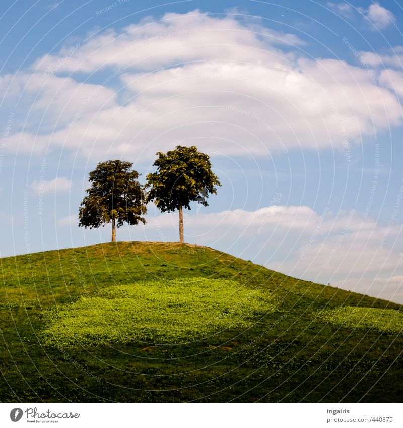 The little mountain Nature Landscape Sky Clouds Summer Beautiful weather Plant Tree Grass Meadow Hill Illuminate Stand Tall Natural Above Blue Brown Green White