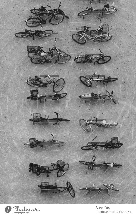 Order in chaos | Parking lot bicycles Exterior shot Means of transport Bicycle rack Many Town Mobility Wheel Cycling Transport Deserted Eco-friendly