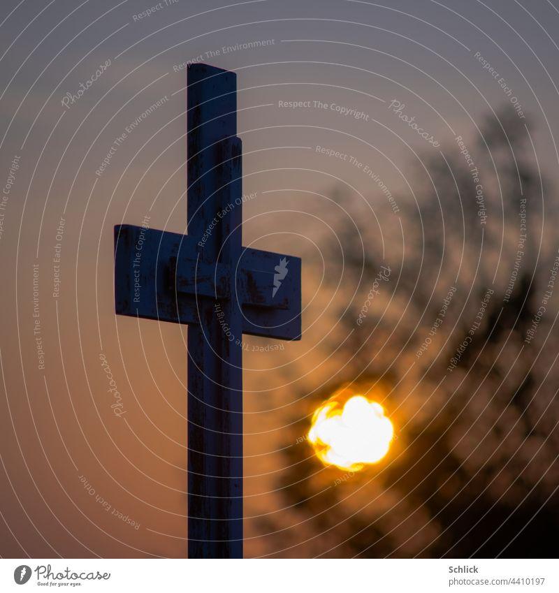 A new life or sunrise under a wayside cross Wegekreuz Sunrise Life New shrub shrubby Crucifix Catholicism Morning Twilight Dawn Sky Sunset Colour photo
