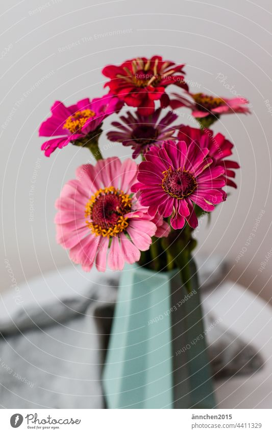pink flowers in a turquoise vase stand on a small table Summer Autumn Vase Bouquet Nature Blossom Pink Turquoise Green Table Flower Decoration Interior shot