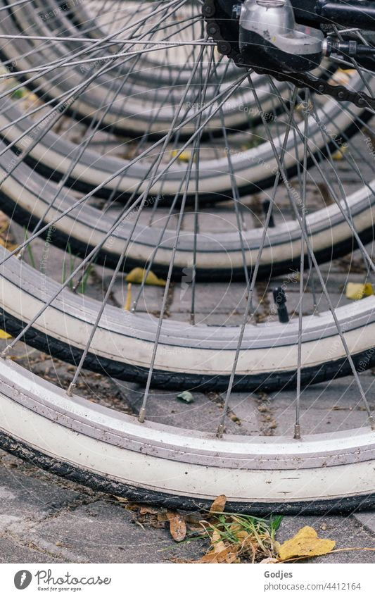 Bicycle tires in a row Tire Spokes Bicycle tyre Wheel Detail Means of transport Close-up Exterior shot Colour photo Deserted Metal Old Wheel rim
