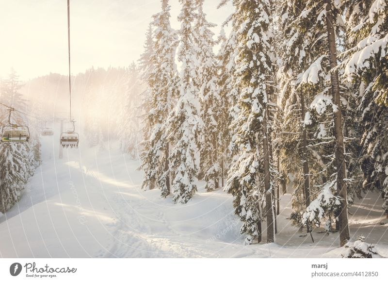 Occupied | Chairlift in winter landscape Chair lift Ski lift Skiing Winter sports Winter vacation Snow Trip Sports Vacation & Travel Mountain Nature Forest