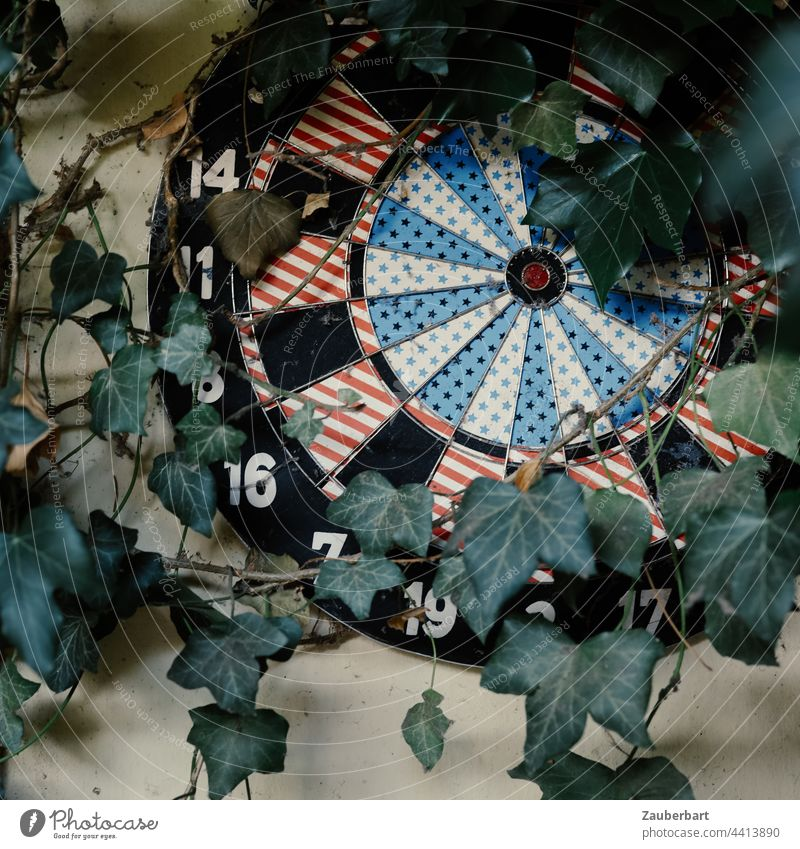 entwined with ivy // the window can wait // so wait you too Dartboard Target Ivy aimlessness Darts overgrown Strike Round circularly Life goal precise Old