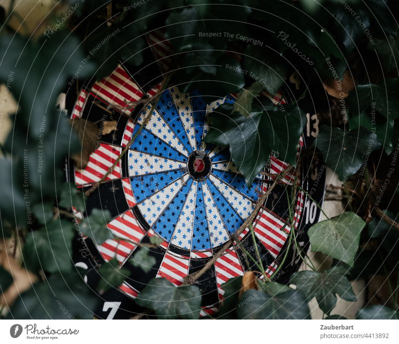 Dartboard overgrown with ivy as a symbol for aimlessness Useless Target Ivy Darts Strike Round circularly Life goal precise Old Circle focus Arrow Aim