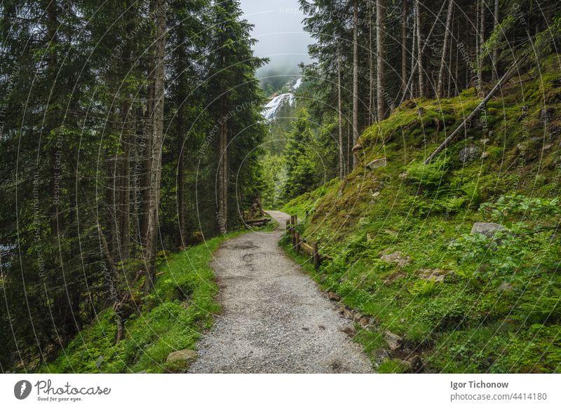 Alpine mountain hiking trail near Grawa waterfall. Sulzenau Alm, Stubai Alps, Austria alpine view summer alps austria winding stubai stream valley