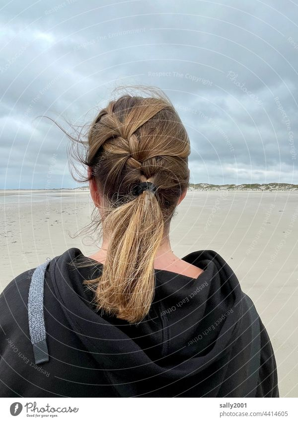 Beach Wind Hairstyle hair hairstyle Braids Plaited Hair and hairstyles Long-haired Woman Brunette Feminine Disheveled Sandy beach duene Back of the head Blow