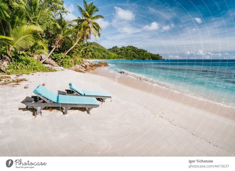 Mahe Island, Seychelles. Holiday vocation on the beautiful exotic Anse intendance tropical beach. Ocean wave rolling towards sandy beach with coconut palm trees