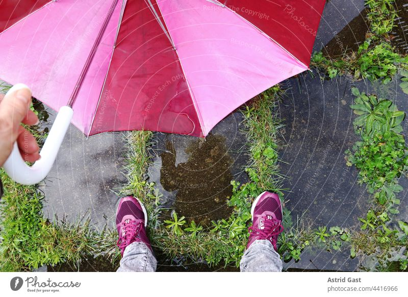 The feet of a woman with an umbrella on the wet floor Umbrella Rain Woman Legs Puddle Wet Water Hand out Rainy weather Weather Cold Damp Footwear Ground Stand