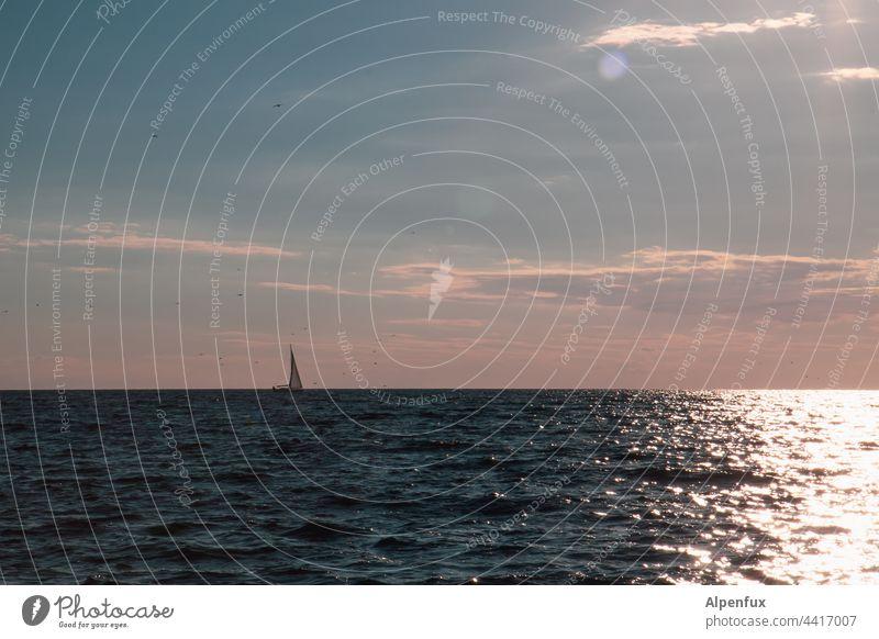 A ship will come Ocean Sailboat Water Sky vacation Sailing Summer Freedom Wind Horizon wide Vacation & Travel Navigation Sailing ship Adventure Vacation mood