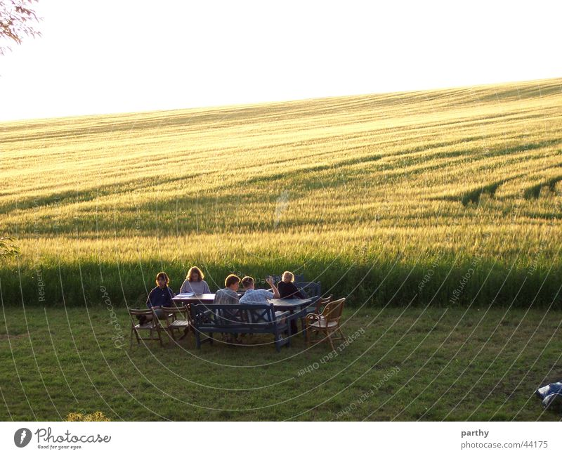 A table in front of the grain field Table Breakfast Field Grain Sun Lawn
