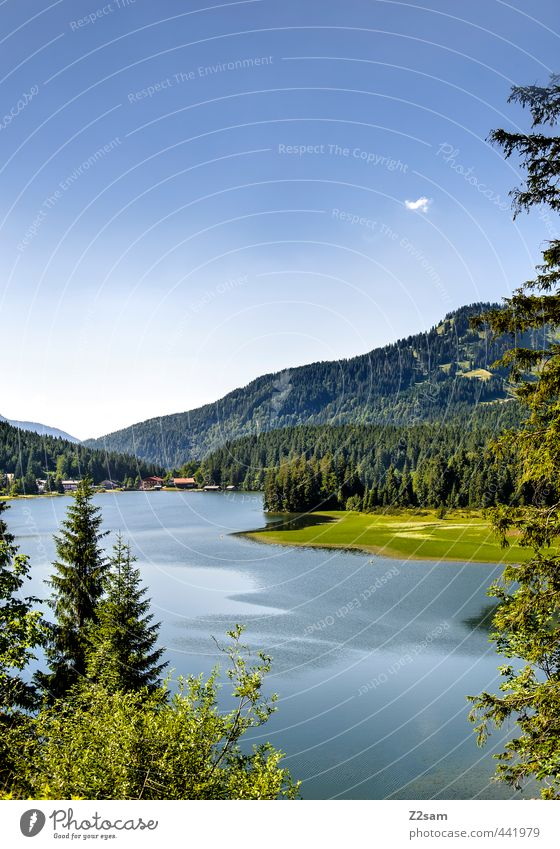 Spitzingsee Cycling Nature Landscape Cloudless sky Summer Beautiful weather Bushes Forest Alps Mountain Lakeside Esthetic Far-off places Natural Blue Green Calm