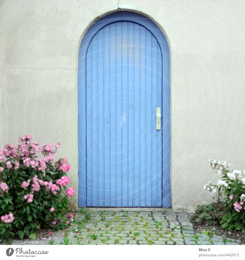 Blue door House (Residential Structure) Wall (barrier) Wall (building) Facade Door Closed Gate Entrance Flower Pot plant Garden path Colour photo Multicoloured