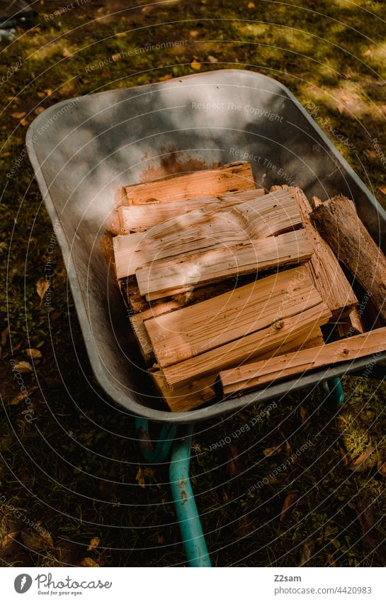 firewood Camping voyage Firewood Wood Logs Stack of wood Wheelbarrow Light Summer Sun Meadow resource Colour photo Brown Fuel