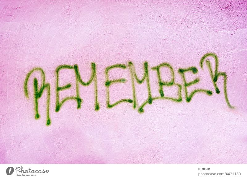 REMEMBER is written in green capital letters on the pink wall / remember / graffito Remember preserve souvenir Graffito Graffiti upper-case letters Handwriting