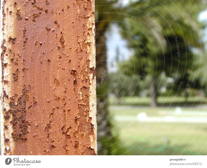 Green Brown Europe Rust Palm tree Skeleton Lamp post Floodlight Resort Mini golf