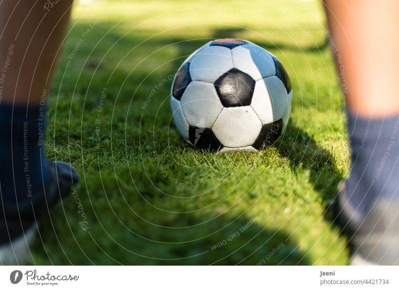 Goalkeeper on the soccer field Foot ball Football pitch Soccer Goal Feet Legs leg feet Footwear Playing Playful Sports Ball sports Green Leisure and hobbies