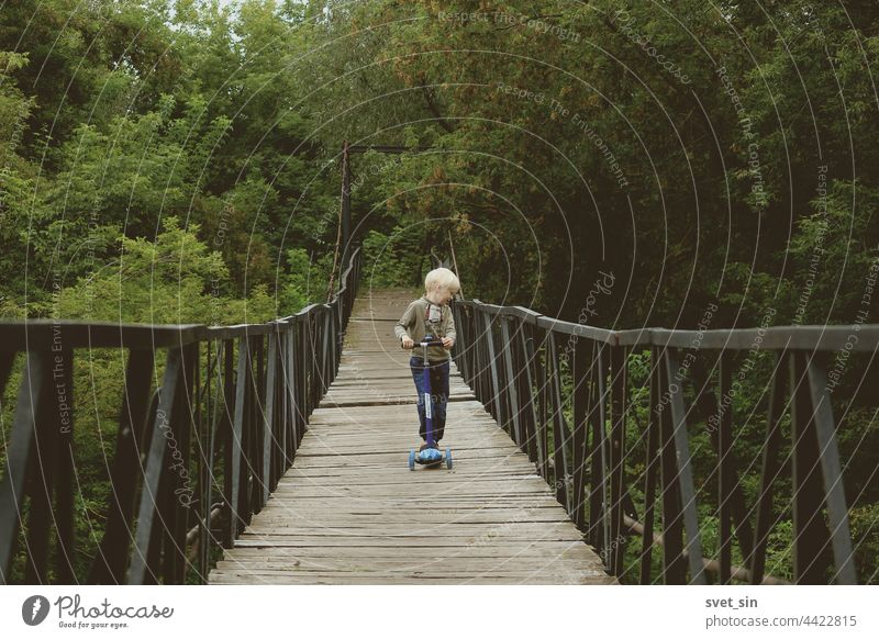 A small blond boy is riding a kick scooter on a suspension bridge against a background of barely yellowed dense green foliage. blonde child nature Bridge