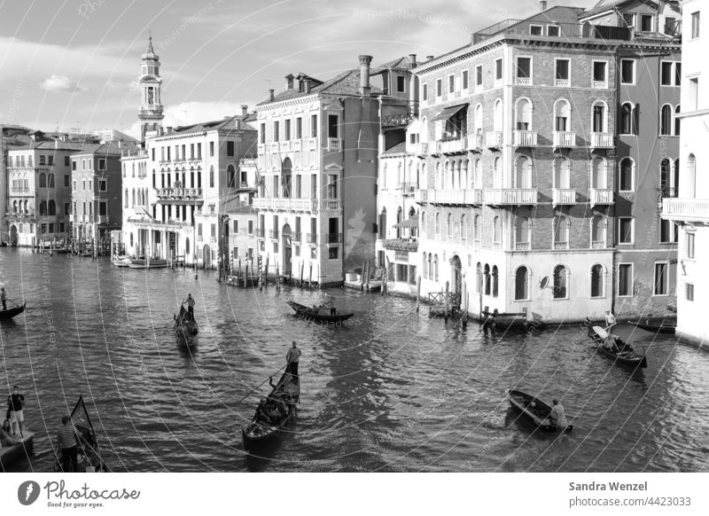 Black and white photography of Venice Grand Canal Historic City trips sights Channel Waterways gondola Flood Aqua Alta Navigation boats City in water San Marco