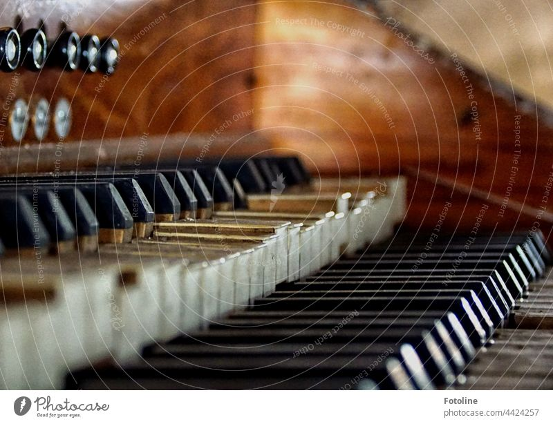 Lost Place - this old church organ has been retired for decades. A silent musical instrument is always sad. lost place forsake sb./sth. Broken Old Transience