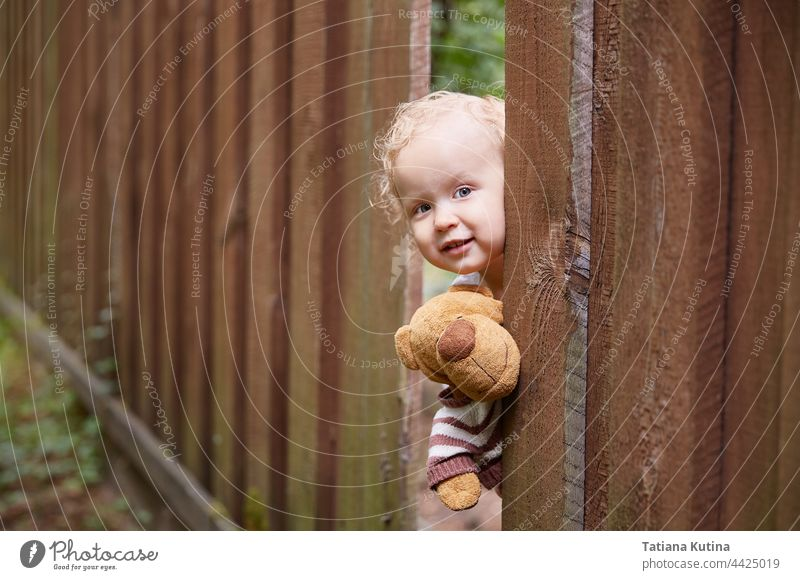 A little curly-haired girl looks out of a hole in the wooden fence. Holds a teddy bear toy. White dress. Summer day. play kid toddler happy child childhood