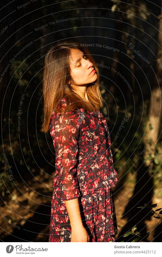 Woman in a state of relaxation, receives sunlight on her face. Relaxation young woman Calm Colour photo outdoors Trees Exterior shot Nature Sunlight female