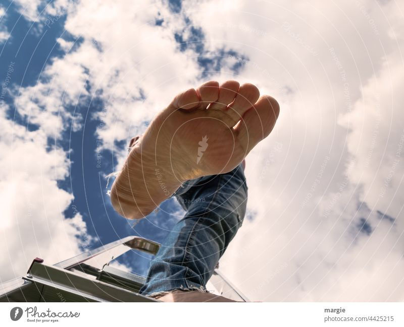 A woman stands on a ladder, her foot steps into the void Feet Ladder Human being Exterior shot Adults Colour photo Sky Clouds cloudy Summer Light Go up descend