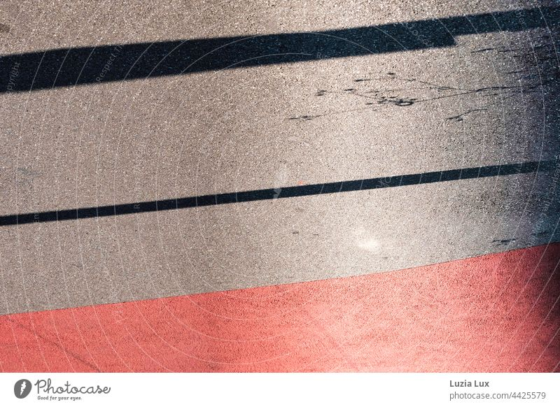 Pavement markings red and grey, with shadows of tender stalks at the edge Shadow Sunlight sunshine Bright Flashy Contrast Summer Lane markings Back-light Town