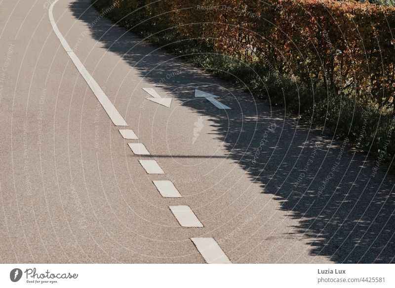 Shadows, lines and contrasts: cycle path with arrows in two directions, one of them is in the shadow of a hedge Sunlight sunshine Bright Flashy Contrast Summer