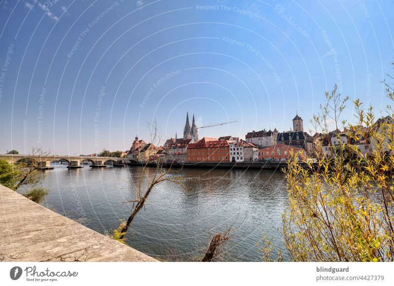 Regensburg in the sunshine Danube Dome Crane Tourist Attraction Exterior shot Vacation & Travel Colour photo Summer Germany Beautiful weather Landmark Tourism