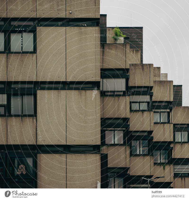 dark gloomy exterior facade of a 70s apartment building Architecture Apartment Building Balconies Dark somber Facade Balcony urban City Design Block