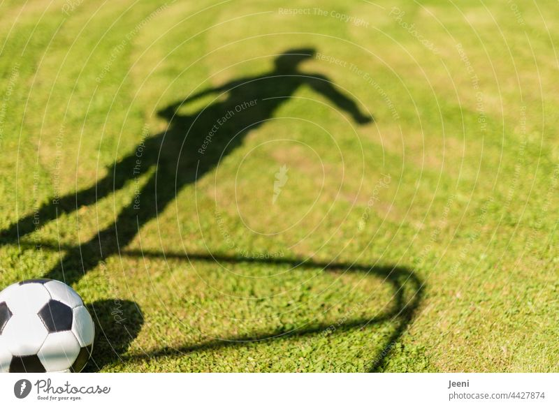 Shadow play with ball Foot ball Football pitch Soccer Goal Ball Ball sports Feet Legs Body Posture Athletic Sportsperson Soccer player Soccer training