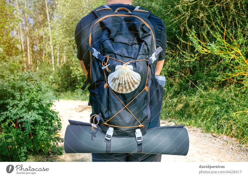 Unrecognizable pilgrim of Saint James way from behind unrecognizable man saint james way backpack shell scallop mat trekking walk hiking travel midsection