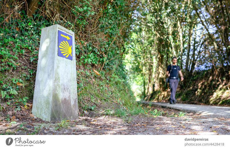 Milestone of Saint James way with pilgrim walking saint james milestone signpost man shell hiking travel camino santiago route tourism path asturias arrow