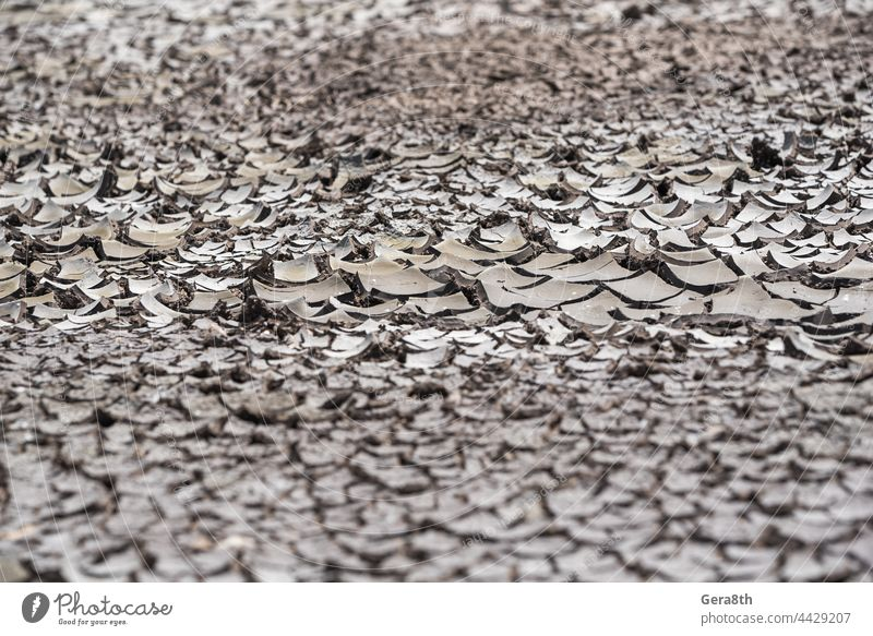 dry soil without plants close up arid background bad ecology catastrophe climate cracks crisis desert drought earth ecological crisis ecological disaster
