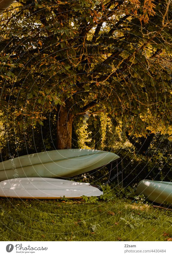 Canadier or boats at the camping site Camping voyage canadian Canadian canoe Nature Green Sun Summer Sunlight Meadow storage Dry Sports free time Aquatics