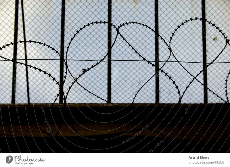 Dark Fence Grating Captured Penitentiary Barbed wire Wire netting