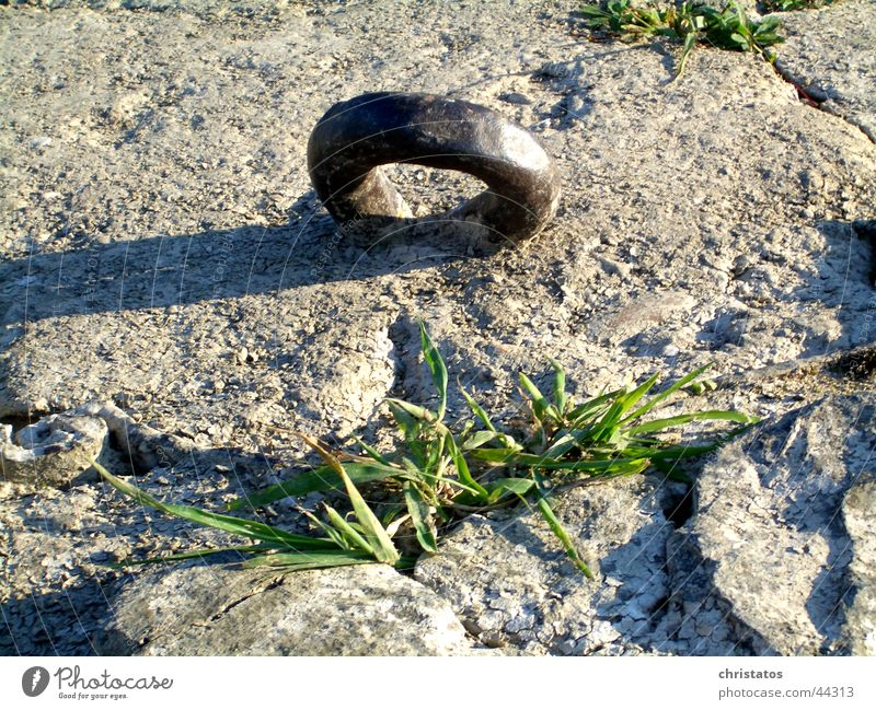 Steel ring with green Iron Metal ring Grass Green Concrete Precarious Circle Stone Nature