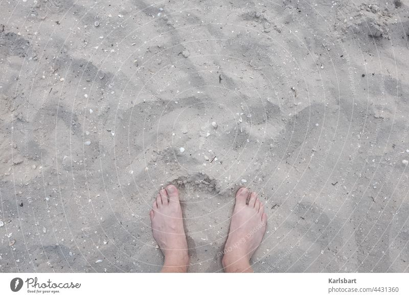 Stretching feet in the sand Feet up Beach Summer Barefoot Relaxation Toes Vacation & Travel coast Sand Summer vacation Sandy beach Sun Colour photo