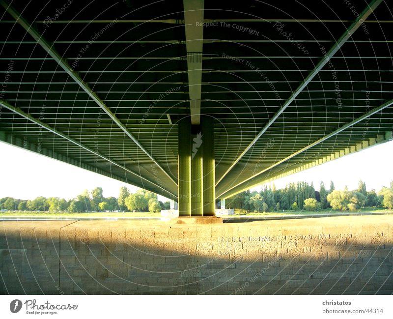 Nature Water Tree Sun Green Stone Coast Bridge Highway Cologne Steel Manmade structures Rhine Under a bridge