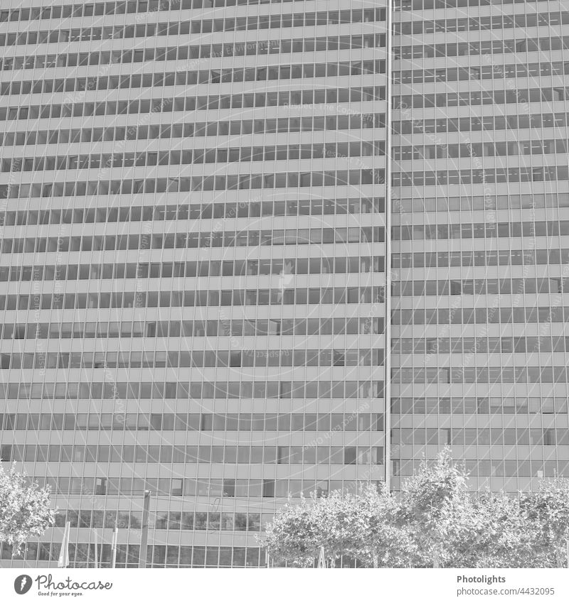 Facade of a skyscraper in black and white Black & white photo High-rise Gray Window Architecture Building House (Residential Structure) Town Exterior shot