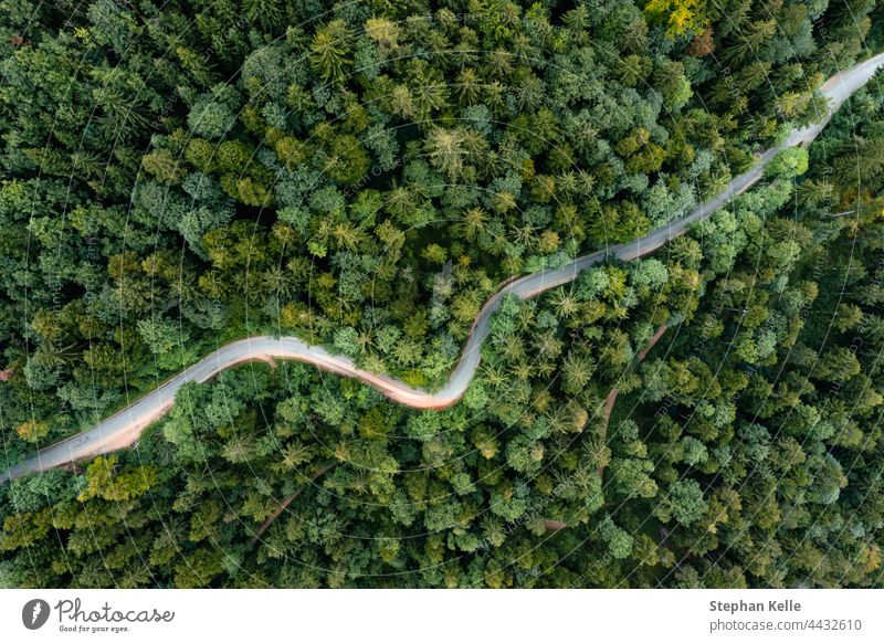 Backlights of a driving car in a curvy road as long exposure from a drone, having a trip to a green summer forest at the evening. curve street backlight night