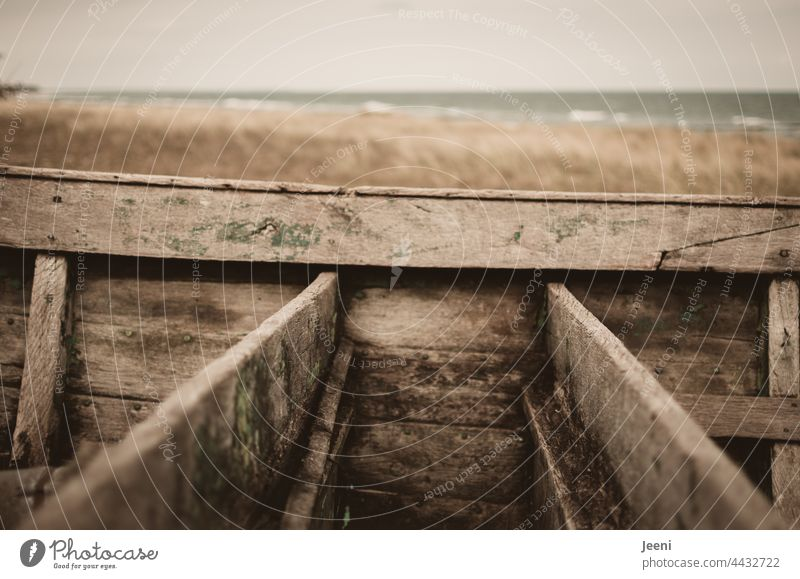 Shipwrecked with a wooden boat on the beach ship Wood wooden ship shipwrecked Beach Beach dune duene Marram grass Ocean coast Sand North Sea Baltic Sea
