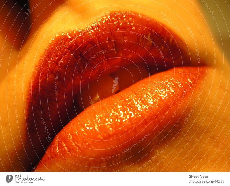 sensuality Lips Feminine Woman Kissing Red Lipstick Mouth Passion Teeth