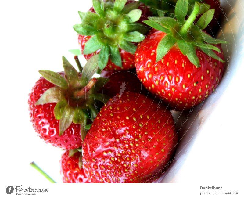 Strawberry Dream Summer Nutrition Sun Strawberries ^^