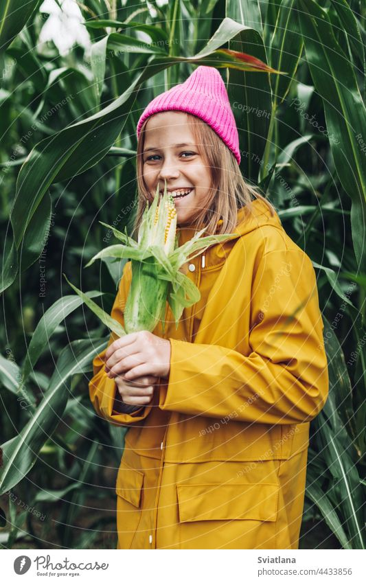 Stylish teenage girl in yellow raincoat and hot pink hat laughing on corn field autumn child cornfield cap cloak lifestyle play cute rural plant nature harvest