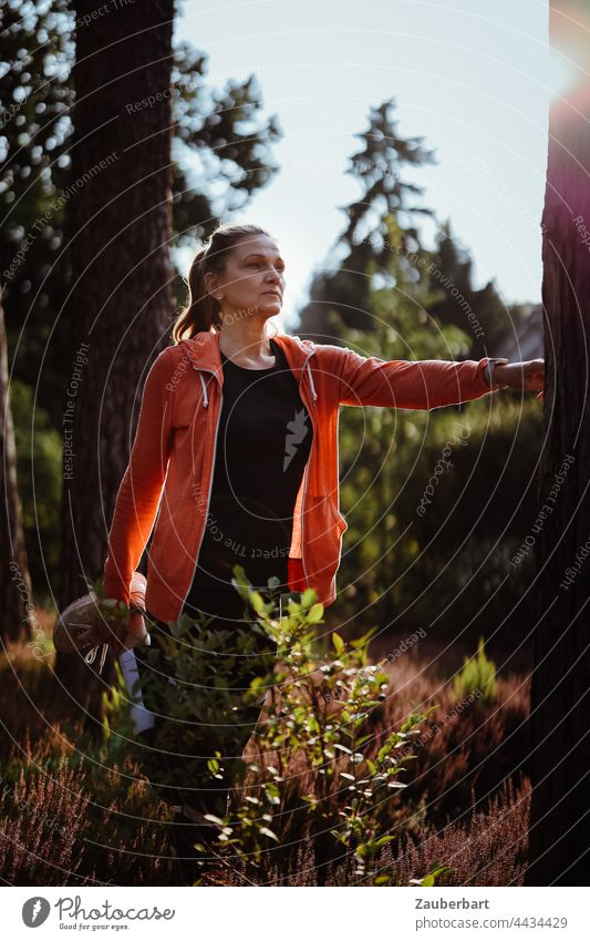 Sporty woman with ponytail stretching in the heath Woman Stretching pretty Athletic Heathland Sun Ponytail Orange Back-light Sports Jogging Walking Fitness